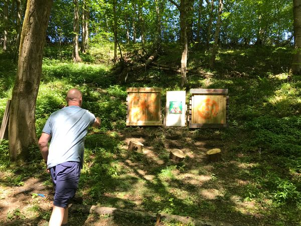 Have an adventure Archery & Axe Throwing